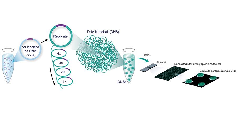 DNB Technology
