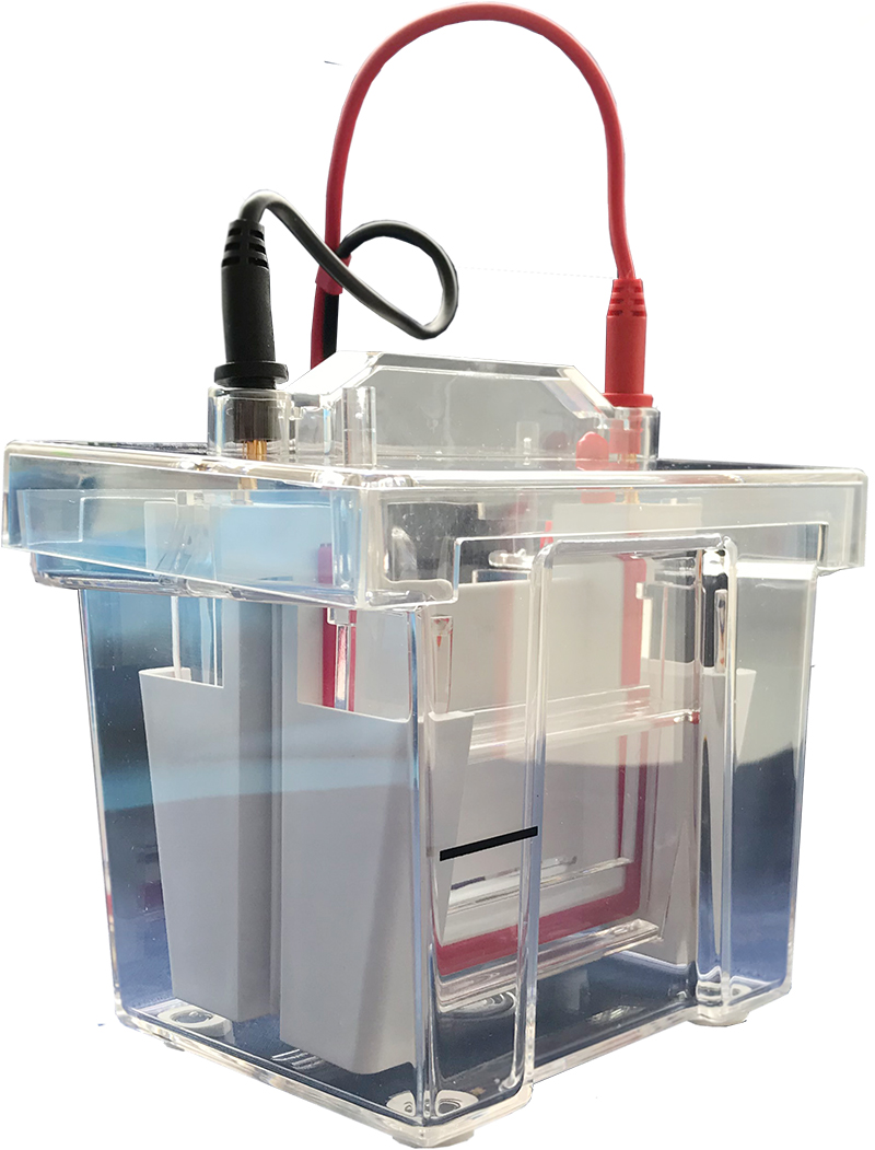 GenBox Mini Electrophoresis Tank