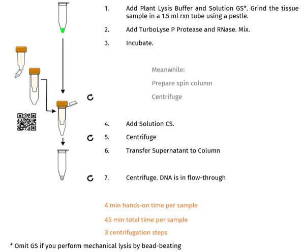 EchoLUTION Plant DNA Kit - Procedure