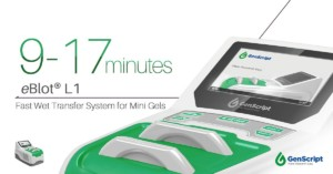 eBlot® L1 Fast Wet Transfer System for Mini Gels