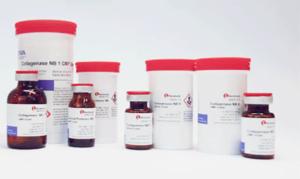 Collagenase NB 1 Premium Grade