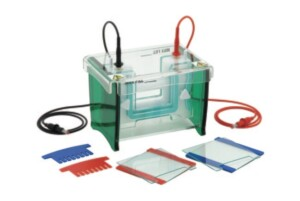 TV100 mini-Gel Vertical Electrophoresis System, Scie-plas
