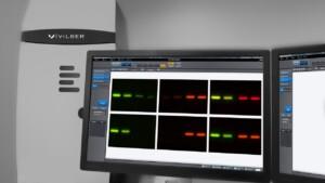 Fusion Solo 6 Spectral