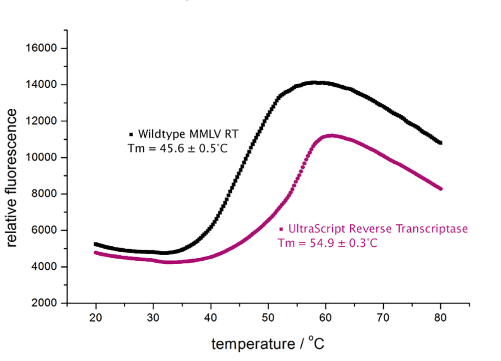 UltraScript Reverse Transcriptase - Figure 1. Thermostable enzyme up to 55°C
